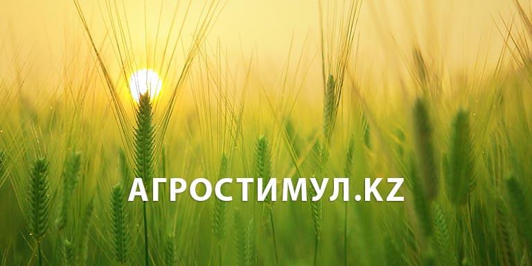 Дизайн, верстка и программирование корпоративного сайта сельхоз оборудование